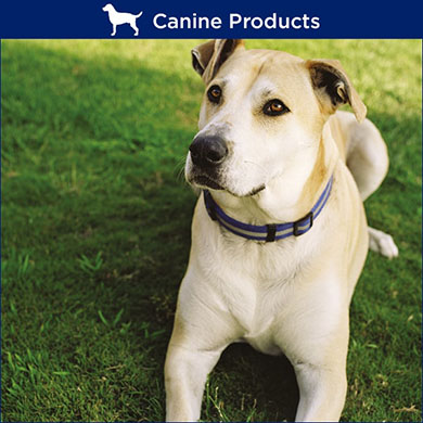 TRM Dog Products